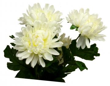 Chrysanthemen-Strauß weiß