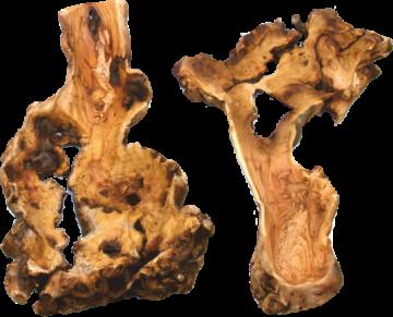 Wurzelholz Knochenschale blackwashed (2 Stück)