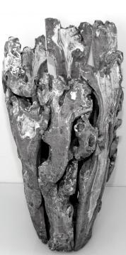 Wurzelholz Vase mittel ca. 55cm blackwashed (2 Stück)