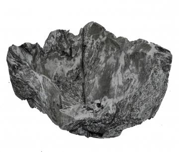Wurzelholz Schale Rustika klein ca. 30cm blackwashed (4 Stück)