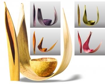 Sortiment Galera Blatt & Kokosschalen in Farbe ( 15 Stück )