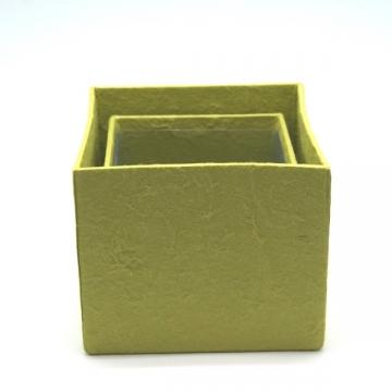 Blumen Boxx 2er Set in Silbergrün mit Folie innen [10x10x12cm / 8x8x10cm]