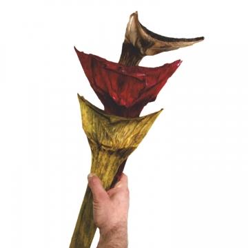 Agave Groß im 3fach Farbmix  (125 Stück)