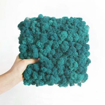 Moos•Moos Islandmoos Organic Moosbild ´Amalia´ in Karibik / Oceanblue – Moosplatte ( 25x25cm ) – einzigartiges Gefühl trifft auf besonderes haptisches Gefühl