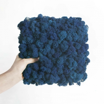 """Moosbild """"Amalia"""" Islandmoos in Blau 25x25cm"""