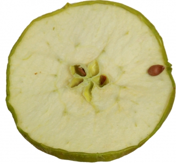 Apfelscheiben in Grün ( 1000g )