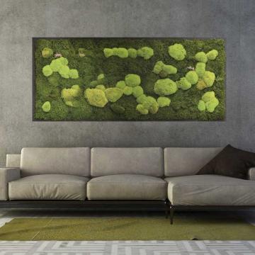Moosbild Wald-und Kugelmoos 182 x 82,5cm auf Holzfaserplatte anthrazit