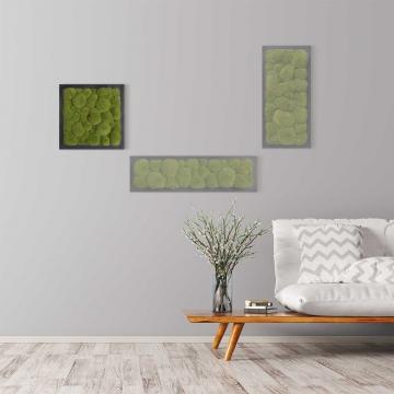 Moosbild Kugelmoos 35 x 35 cm auf Holzfaserplatte anthrazit