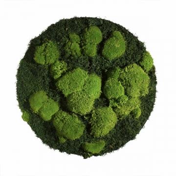 Moos•Moos Moosbild rund aus `Ballenmoos und Grünmoos´ Ø 70cm präpariert im Grün Mix mit Edelstahlrahmen