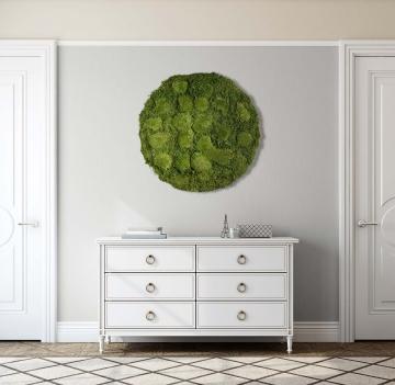 Moos•Moos Organic Rundbild aus `Ballenmoos und Grünmoos´ präpariert in Moosgrün mit Edelstahlrahmen ( Ø 70cm )