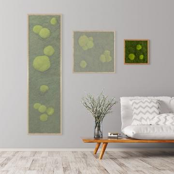 Moosbild Waldmoos & Kugelmoos 35 x 35 cm mit Tischlerrahmen aus geölter Lärche