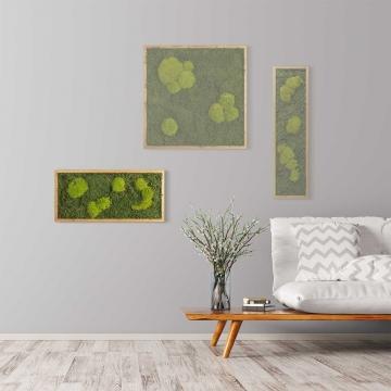 Moosbild Waldmoos & Kugelmoos 57 x 27 cm mit Tischlerrahmen aus geölter Lärche