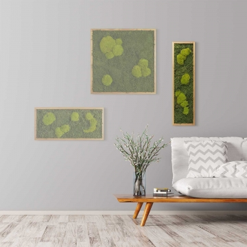 Moosbild Waldmoos & Kugelmoos 70 x 20 cm mit Tischlerrahmen aus geölter Lärche