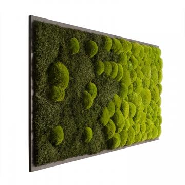 Moosbild Verlauf mit Wald- und Ballenmoos 182 x 82,5cm auf Holzfaserplatte anthrazit