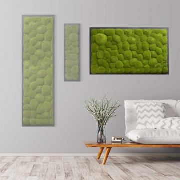 Moosbild Kugelmoos 100 x 60 cm auf Holzfaserplatte anthrazit