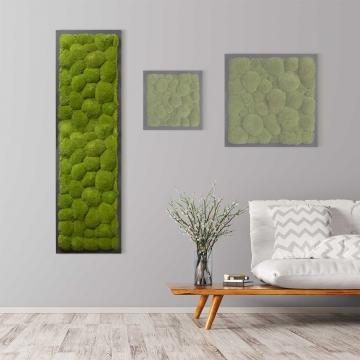 Moosbild Kugelmoos 140 x 40 cm auf Holzfaserplatte anthrazit