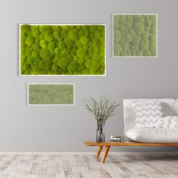 Moosbild Kugelmoos 100 x 60 cm mit weißem Tischlerrahmen