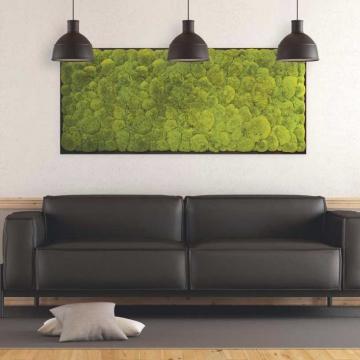 Moosbild Kugelmoos 182 x 82,5cm auf Holzfaserplatte anthrazit