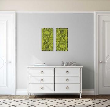Moos•Moos Ballenmoosbild Lang mit Ballenmoos präpariert in Apfelgrün mit schwarzem Rahmen ( 63 x 33cm )