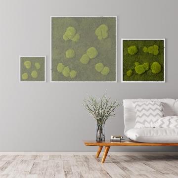 Moosbild Waldmoos & Kugelmoos 55 x 55 cm mit weißem Tischlerrahmen