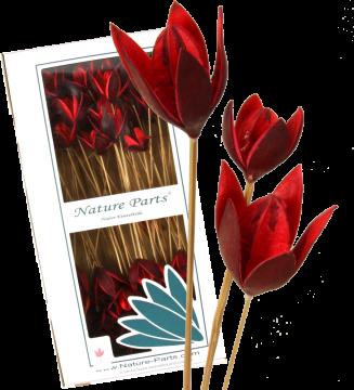 Wildlilie am Stiel in Rot (50 Stück)