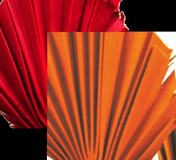 Sun Palm Cut mit Stiel im 3fach Farbmix  (30 Stück)