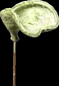 Badam am Stiel gewachst in Grün Light  (40 Stück)