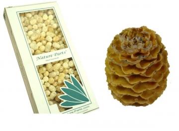 Sabulosum Zapfen Ø 4-5cm Hell (2 kg)