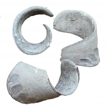 Elephant Ears in Stonewashed (60 Stück)