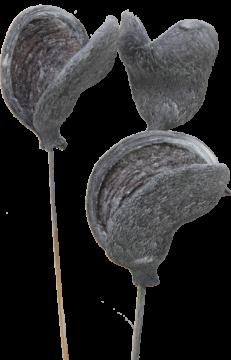 Badam am Stiel in Frosted Blackwashed (40 Stück)