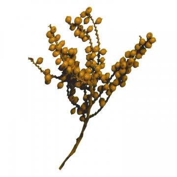 Canella Spezial Zweig in Orange (700 Stück)
