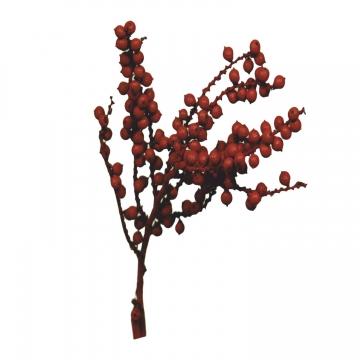 Canella Spezial Zweig in Rot (700 Stück)