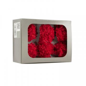 Nelken Kopf ´Carnation´ in rot Kopfgröße Ø 5cm, Set mit 6 Stück