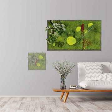 Moosbild ´Pflanze´ 100 x 60 cm auf Holzfaserplatte anthrazit