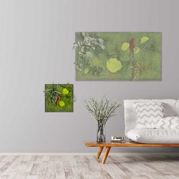 Moosbild ´Pflanze´ 35 x 35 cm auf Holzfaserplatte anthrazit