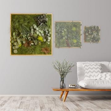 Moosbild ´Dschungel´ 80 x 80 cm mit Rahmen aus geölter Lärche