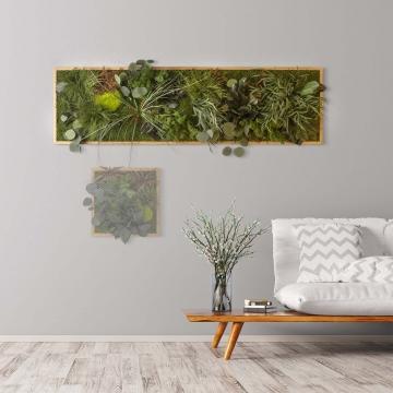 Moosbild ´Dschungel´ 140 x 40 cm mit Rahmen aus geölter Eiche