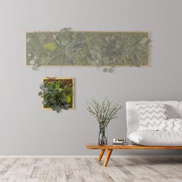 Moosbild ´Dschungel´ 35 x 35 cm mit Rahmen aus geölter Eiche