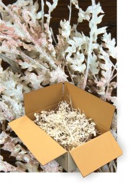 Eichenlaub geglittert in Kupfer Glitter ( je 1 Karton ca. 1kg )