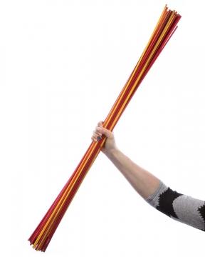 Sortiment Golden Stick / Pflanzenstab Farbmix ( ca. 1m )