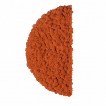 Moos ´Half Moon´ Islandmoos Mandarine Ø 40 cm randbemoost
