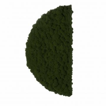 Moos ´Half Moon´ Islandmoos Moosgrün Ø 40 cm randbemoost