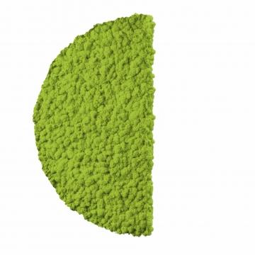 Moos ´Half Moon´ Islandmoos Apfelgrün Ø 60 cm randbemoost