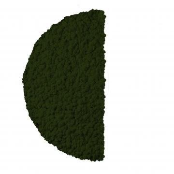 Moos ´Half Moon´ Islandmoos Moosgrün Ø 60 cm randbemoost