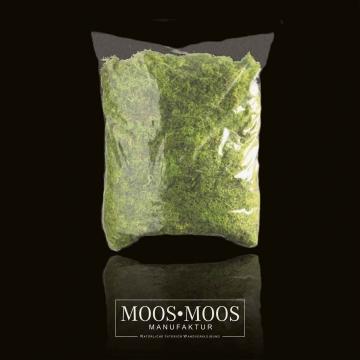 Moos•Moos Islandmoos gerupft präpariert und gefärbt in Apfelgrün ( 1 kg )