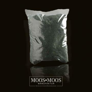 Moos•Moos Islandmoos gerupft präpariert und gefärbt in Moosgrün ( 1 kg )