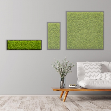Moosbild Islandmoos 70 x 20 cm auf Holzfaserplatte anthrazit