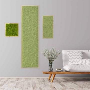 Moosbild Islandmoos 35 x 35 cm mit Tischlerrahmen aus geölter Lärche
