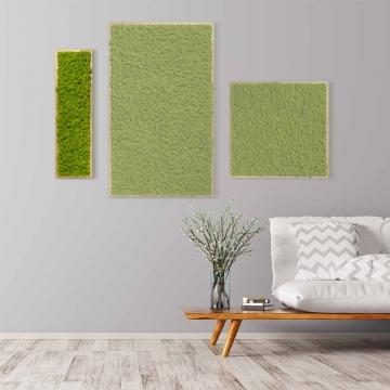 Moosbild Islandmoos 70 x 20 cm mit Tischlerrahmen aus geölter Lärche