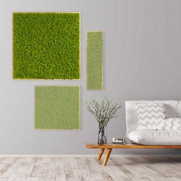 Moosbild Islandmoos 80 x 80 cm mit Tischlerrahmen aus geölter Lärche